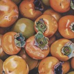 Persimmons Florence